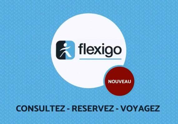Transports à la demande Flexigo